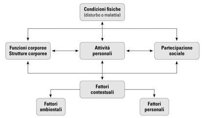 Che accelerare risposte di metabolismo